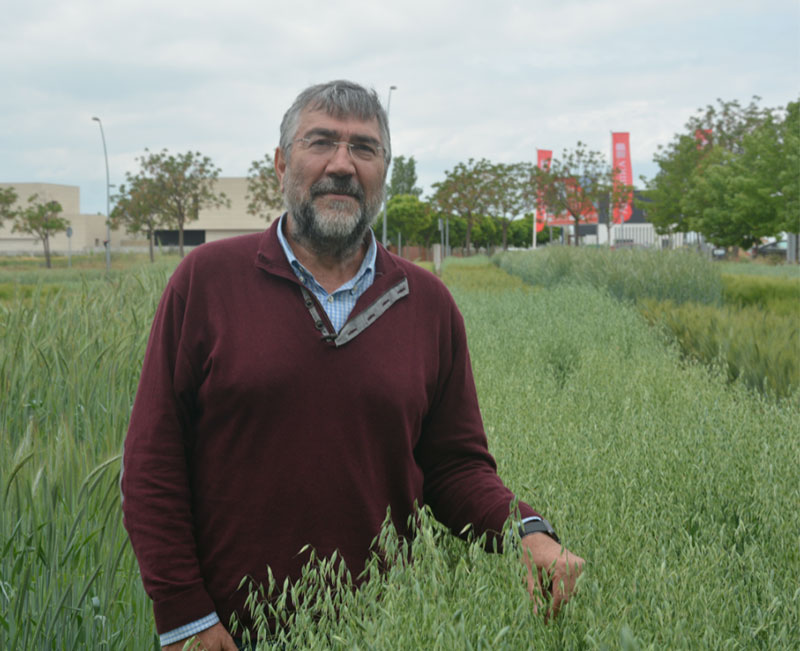 Ignacio Romagosa Agrotecnio new Director