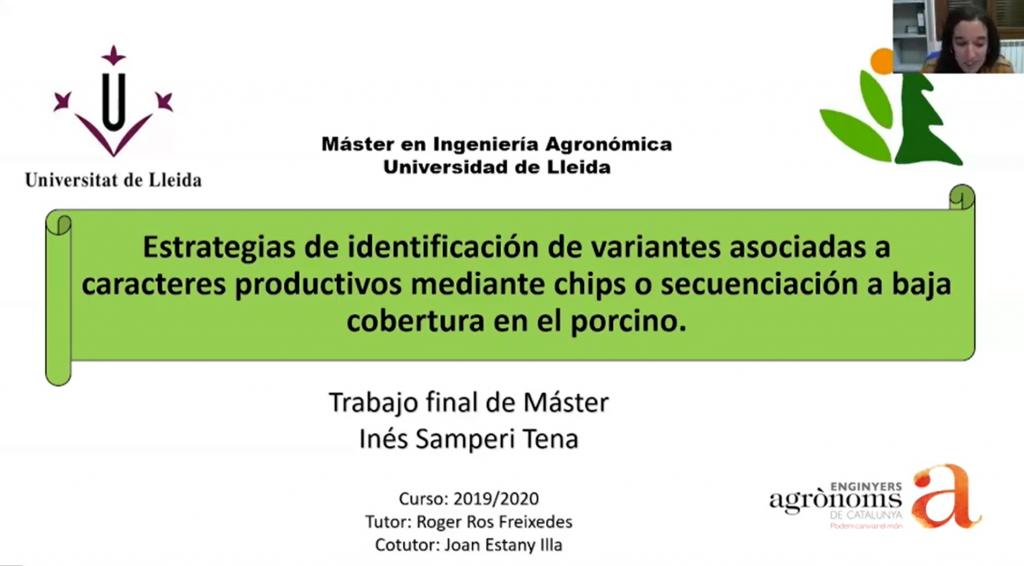 Premi-Ines-Samperi-TFM