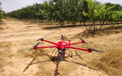 Agrotecnio and GRAP develop a project for 3 years of photon and drone based sensors, at the service of fruit trees management